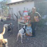 Futter für Straßenhunde auf KOS