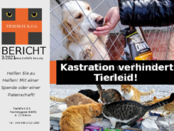Tierhilfe-KOS-Bericht_3-2021_September